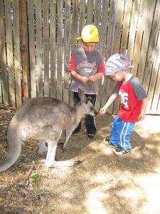 Dreamworld Australian Wildlife