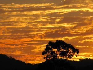 אוסטרליה - שקיעה
