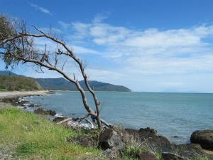 Cairns-Cape Tribulation