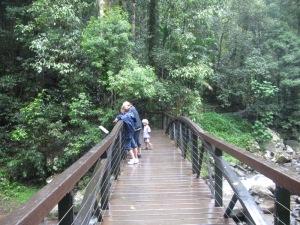 Natural Bridge, Springbrook