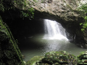 Natural Bridge, Springbrook