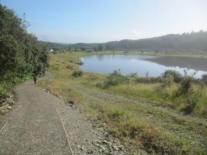 Ross - Water Race Walk