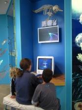 NZ Marine Studies Centre