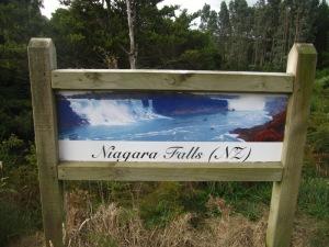 מפלי הניאגרה ניו זילנד