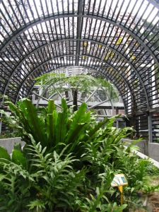 Zoological and Botanical Gardens