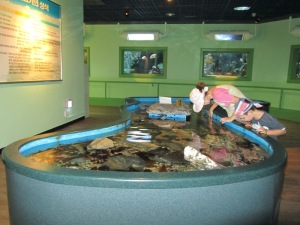Fisheries Science Museum